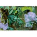 Blau: Flores