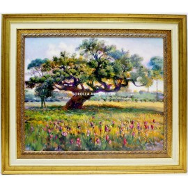 Rafael Atencia: The holm oak