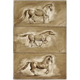 Abraham Pinto: Poses del caballo