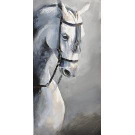 Abraham Pinto: La mirada del caballo