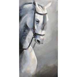 Abraham Pinto: The look of the horse