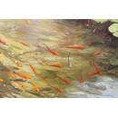 Manuel Leal: Estanque con peces